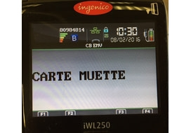 carte muette incident ingenico